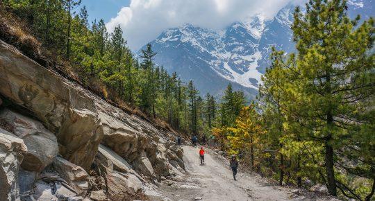 Chame Annapurna Circuit Trek