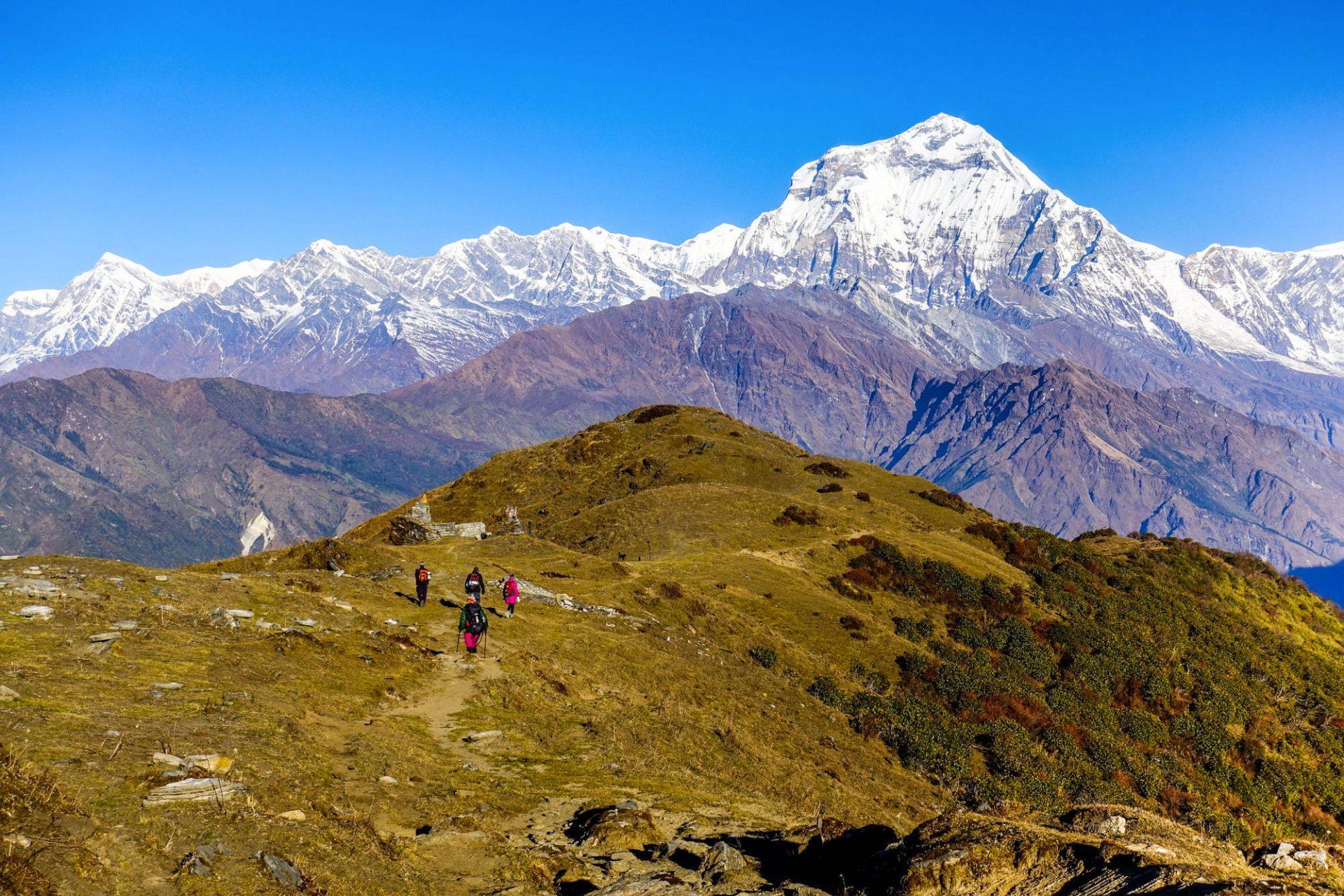 dhaulagiri trail