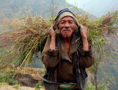 Farmer of Nepal