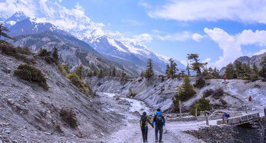 Pisang Nepal