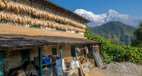 Pothana Village Nepal