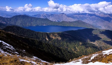 rara at the top